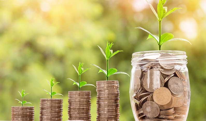 Best Financial Planning in Dubai, UAE - Life Insurance Bazaar